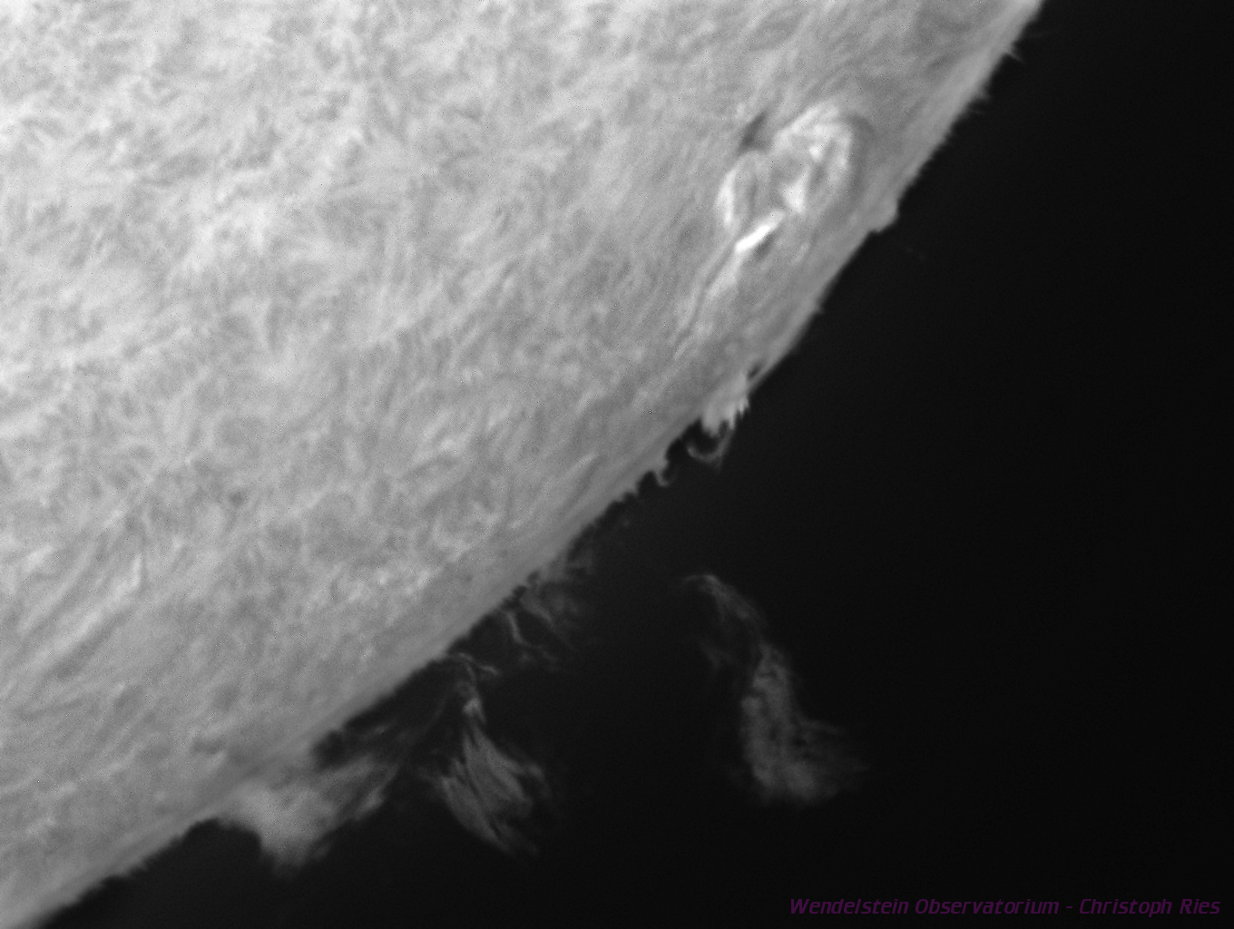 Prominences and spot at the solar limb